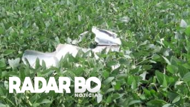 Imagens mostram dimensão da tragédia de avião em Roncador; acompanhe
